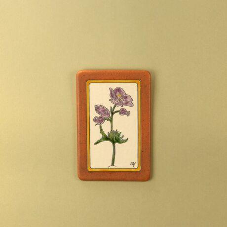 Viola nagy virágos kép