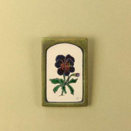 Árvácska kis virágos kép