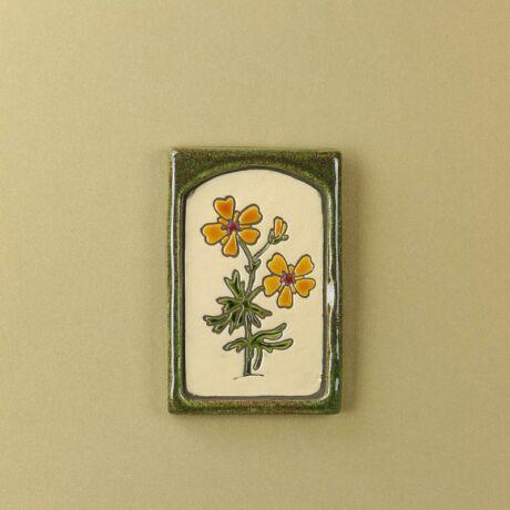 Körömvirág kis virágos kép