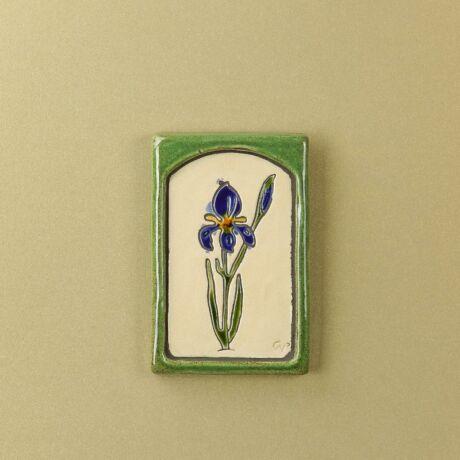 írisz kis virágos kép