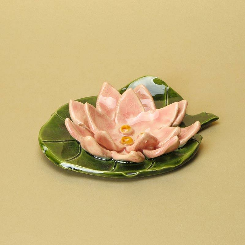 Levélen rózsaszín tavirózsa