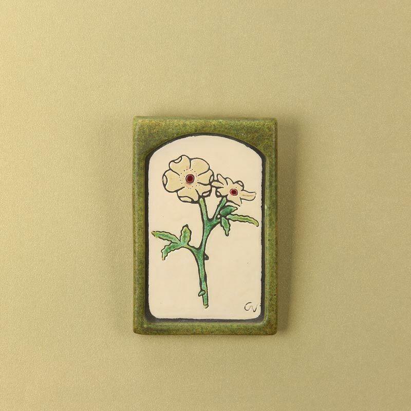 Vadrózsa kis virágos kép